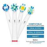 compatibilité brossettes oral b TOP 12 image 3 produit