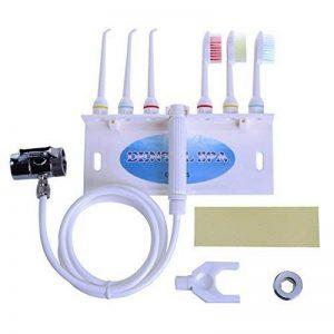 Denshine Personnel professionnel portable Hydropulseur dentaire Gum Spa Jet d'eau dentaire dents fil dentaire Brosse à dents ensembles Salon & Home de la marque Denshine image 0 produit