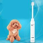 efficacité brosse à dent électrique TOP 11 image 4 produit
