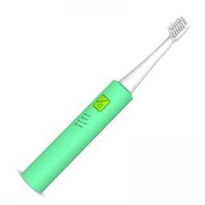 HANER Brosse à Dents électrique USB Rechargeable sonique Brosse à Dents Automatique Adulte ménage Cheveux Doux blanchiment des Dents ( Color : Full Green ) de la marque HANER image 0 produit