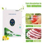 Yosoo 600 mg / h hydroponique d'eau douce de la viande des légumes machines générateur d'ozone numérique ozone de désintoxication de fruits (roue de minuterie - 1-60 min) (3189) de la marque Yosoo image 4 produit